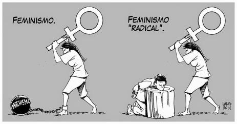 Image result for pics of femi-nazi radicals